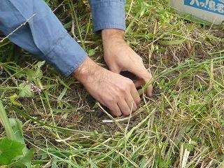 自然農 体験