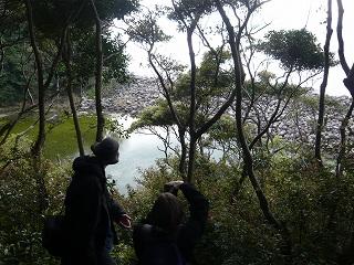 出羽島 Tebajima
